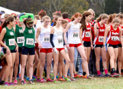 GirlsXCountryStateMeet.jpg